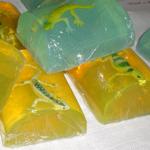 lizard_soap