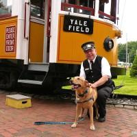 Seashore-Trolley-dog