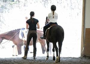 horses_barn