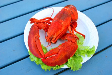 5 Crazy But Delish Lobster Dishes From Restaurants Around Maine